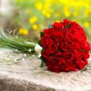 ¿Sabes qué flores regalarle a tu pareja?