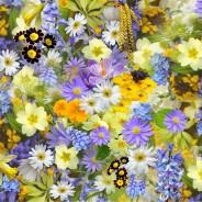 6 flores de verano que alegrarán tu terraza o jardín
